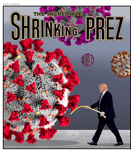 Trump battles coronavirus with a wet noodle in a parody entitled the Incredible Shrinking Prez